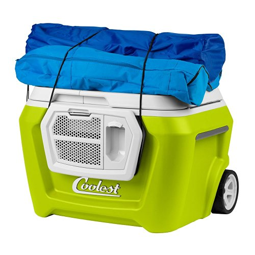 Coolest Cooler - Margarita Green