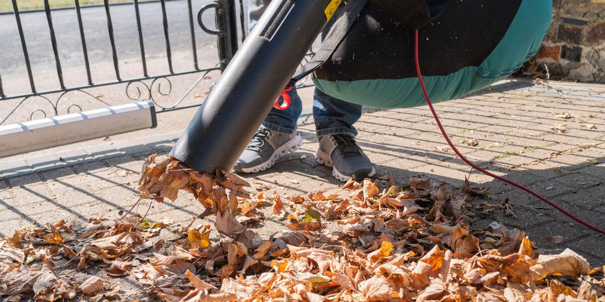 6 Best Leaf Vacuum Mulcher [ Nov. 2020 Reviews ]